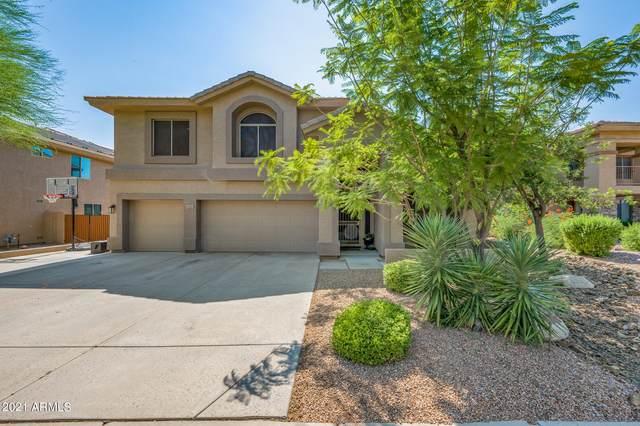 33220 N 60TH Way, Scottsdale, AZ 85266 (MLS #6290647) :: Yost Realty Group at RE/MAX Casa Grande