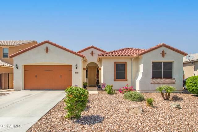 7626 S Boxelder Street, Gilbert, AZ 85298 (MLS #6290741) :: Yost Realty Group at RE/MAX Casa Grande