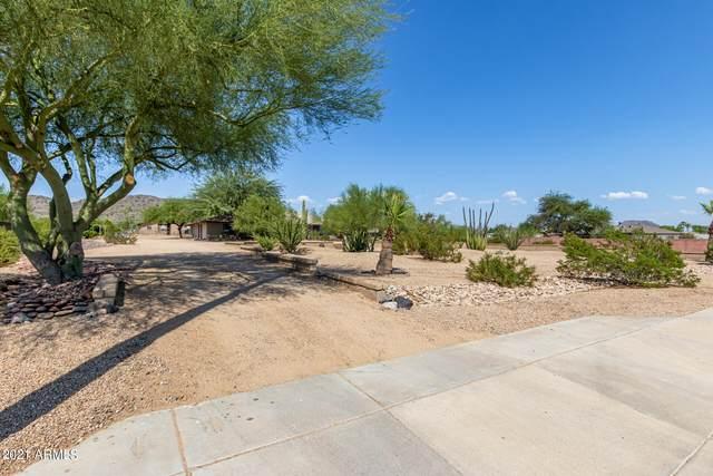 8542 W Calle Lejos, Peoria, AZ 85383 (MLS #6290768) :: Selling AZ Homes Team