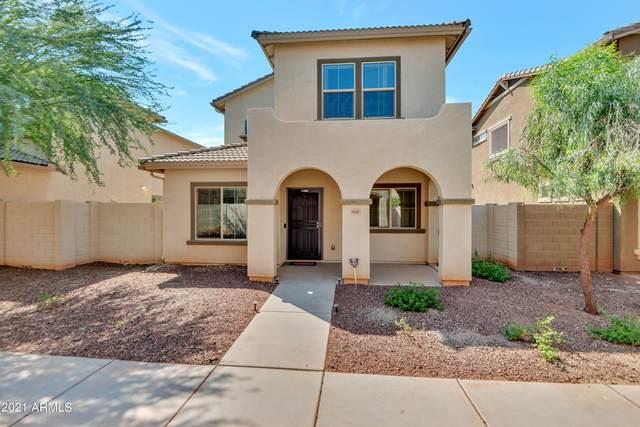 9407 S 33RD Drive, Laveen, AZ 85339 (MLS #6290782) :: Yost Realty Group at RE/MAX Casa Grande