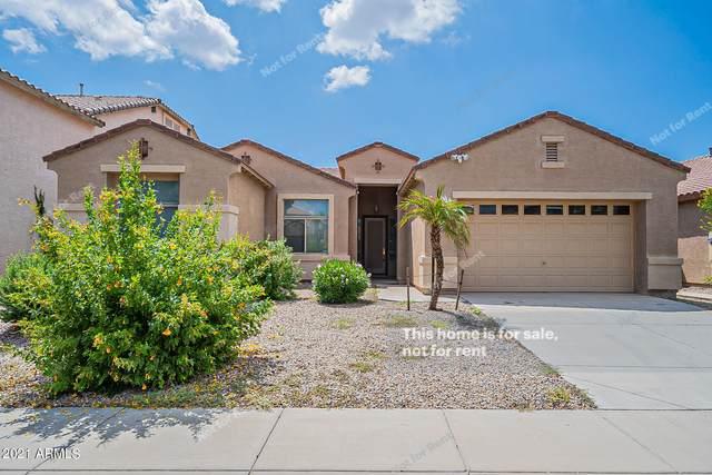 41123 W Novak Lane, Maricopa, AZ 85138 (MLS #6290795) :: Elite Home Advisors
