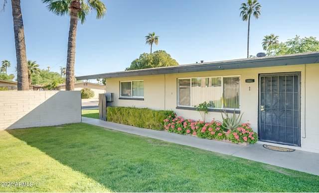 6635 E Avalon Drive, Scottsdale, AZ 85251 (MLS #6290798) :: Klaus Team Real Estate Solutions