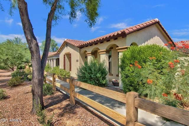 4495 E Woodside Way, Gilbert, AZ 85297 (MLS #6290815) :: Yost Realty Group at RE/MAX Casa Grande