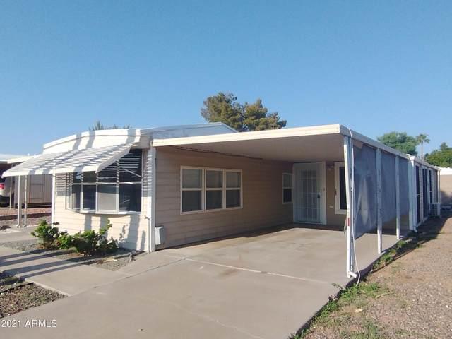 5544 E Arbor Avenue, Mesa, AZ 85206 (MLS #6290837) :: Elite Home Advisors