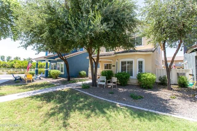 1551 S Mulberry Street, Gilbert, AZ 85296 (MLS #6290845) :: Elite Home Advisors