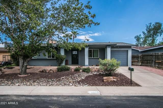 17437 N 8TH Avenue, Phoenix, AZ 85023 (MLS #6290955) :: Yost Realty Group at RE/MAX Casa Grande