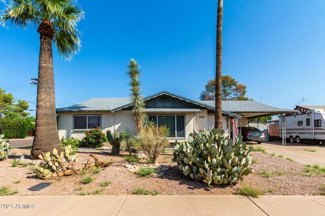 8602 E Edgemont Avenue, Scottsdale, AZ 85257 (MLS #6290966) :: Yost Realty Group at RE/MAX Casa Grande