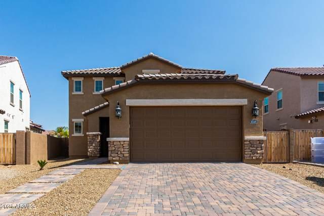 10146 W Carlota Lane, Peoria, AZ 85383 (MLS #6291020) :: Yost Realty Group at RE/MAX Casa Grande