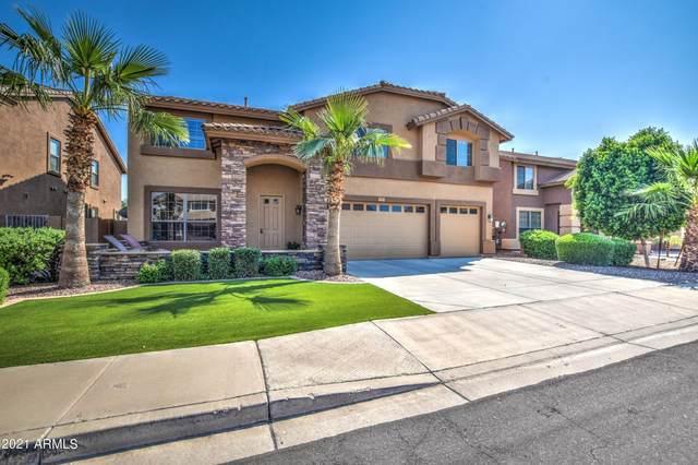 2717 E Teakwood Place, Chandler, AZ 85249 (MLS #6291048) :: Klaus Team Real Estate Solutions