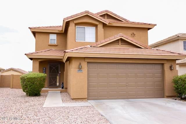 22527 W Lasso Lane, Buckeye, AZ 85326 (MLS #6291081) :: The Riddle Group