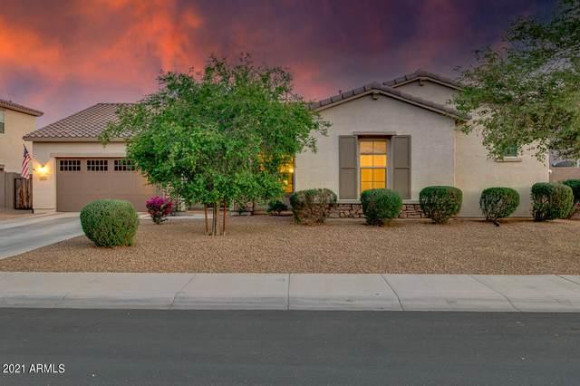2827 E Muirfield Street, Gilbert, AZ 85298 (MLS #6291087) :: My Home Group