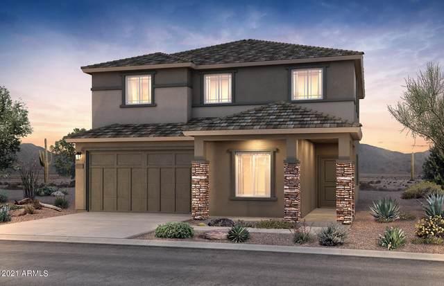 18552 N Desert Willow Drive, Maricopa, AZ 85138 (MLS #6291093) :: Elite Home Advisors
