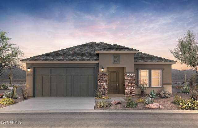 43621 W Mescal Drive, Maricopa, AZ 85138 (MLS #6291127) :: Elite Home Advisors