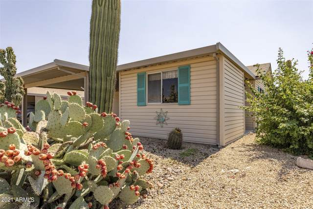 3301 S Goldfield Road #1074, Apache Junction, AZ 85119 (MLS #6291161) :: Klaus Team Real Estate Solutions