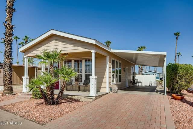 7300 N 51st Avenue D212, Glendale, AZ 85301 (MLS #6291179) :: Elite Home Advisors