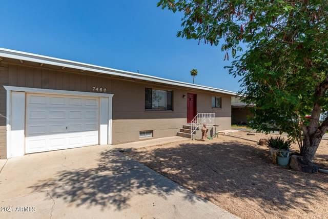 7460 W Cinnabar Avenue, Peoria, AZ 85345 (MLS #6291198) :: Yost Realty Group at RE/MAX Casa Grande