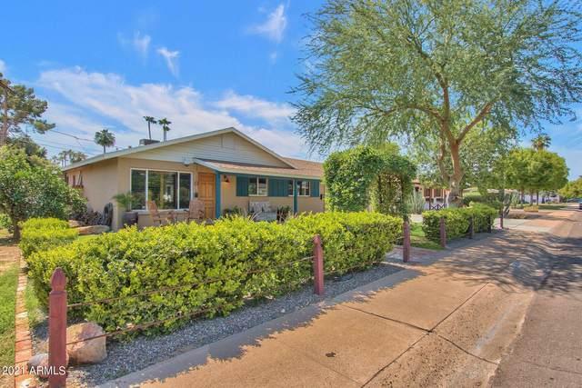 6621 E 4TH Street, Scottsdale, AZ 85251 (MLS #6291200) :: The Riddle Group
