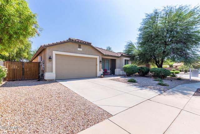 3365 E Aris Drive, Gilbert, AZ 85298 (MLS #6291221) :: Klaus Team Real Estate Solutions