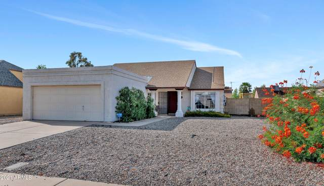 6003 W Crocus Drive, Glendale, AZ 85306 (MLS #6291270) :: Yost Realty Group at RE/MAX Casa Grande