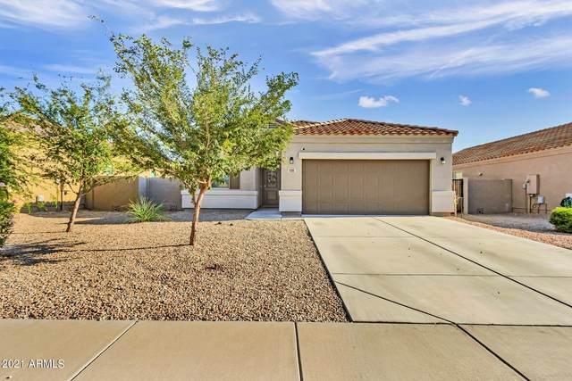11299 E Cliffrose Lane, Florence, AZ 85132 (MLS #6291284) :: The Riddle Group