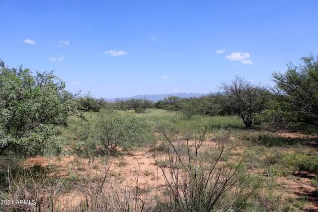 TBD Mellak Parcel 097H, Hereford, AZ 85615 (MLS #6291303) :: Keller Williams Realty Phoenix