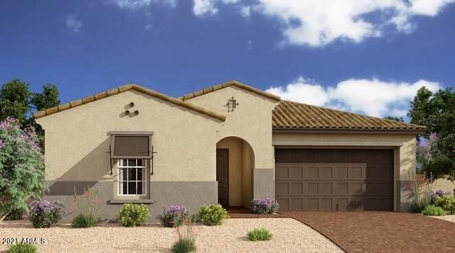 4765 S Pluto, Mesa, AZ 85212 (MLS #6291324) :: Klaus Team Real Estate Solutions