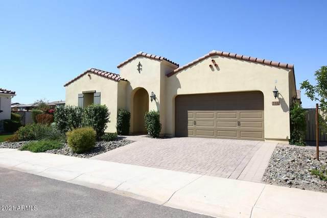 5318 S Verde, Mesa, AZ 85212 (MLS #6291378) :: Yost Realty Group at RE/MAX Casa Grande