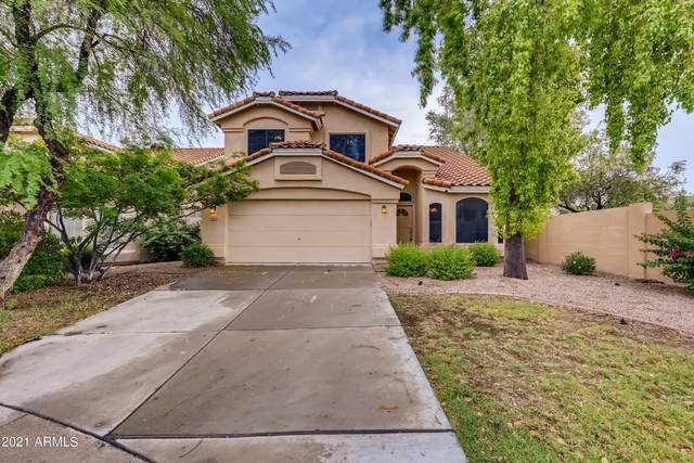6644 E Snowdon Circle, Mesa, AZ 85215 (MLS #6291391) :: Elite Home Advisors
