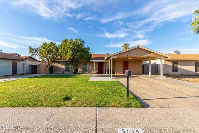 5644 W Cheryl Drive, Glendale, AZ 85302 (MLS #6291488) :: D & R Realty LLC