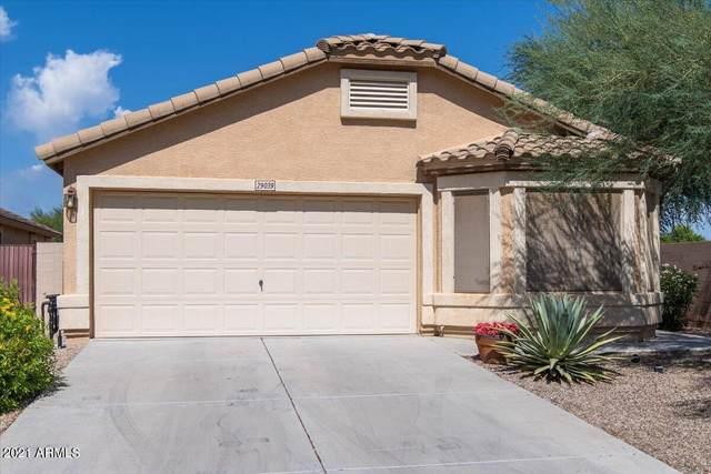 29039 N Coal Avenue, San Tan Valley, AZ 85143 (MLS #6291501) :: The Dobbins Team