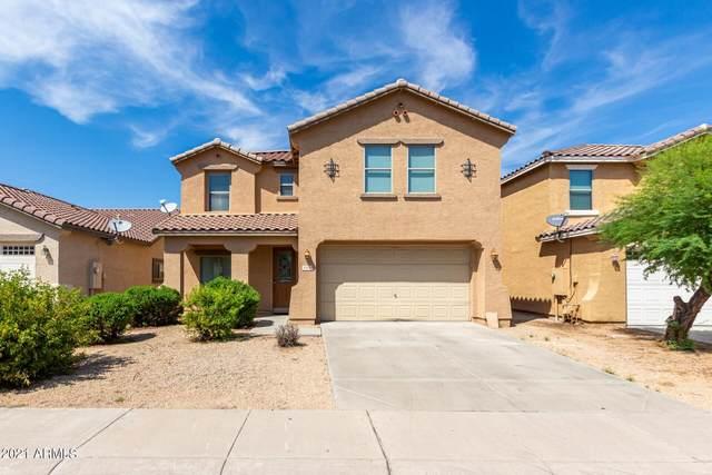 924 E Corrall Street, Avondale, AZ 85323 (MLS #6291572) :: Power Realty Group Model Home Center