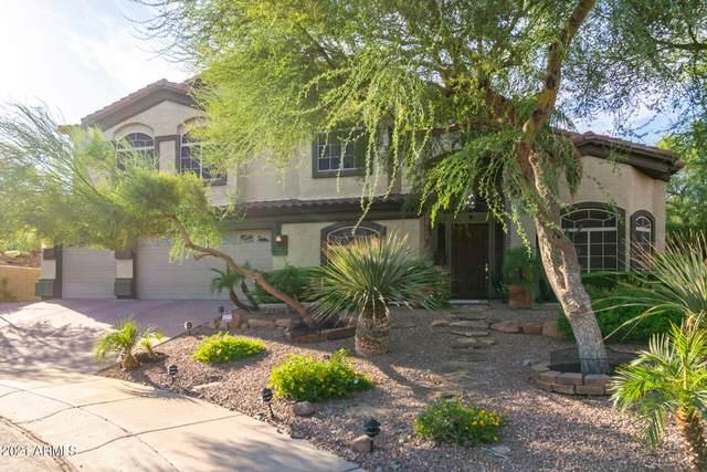 1902 E Vista Drive, Phoenix, AZ 85022 (MLS #6291580) :: Elite Home Advisors
