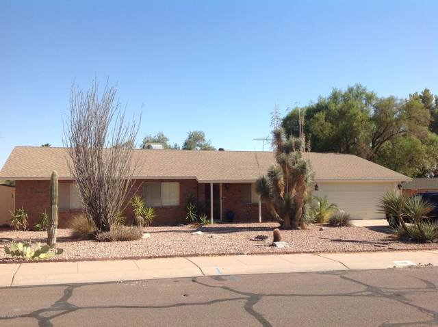 2431 E Lamar Road, Phoenix, AZ 85016 (MLS #6291651) :: Elite Home Advisors