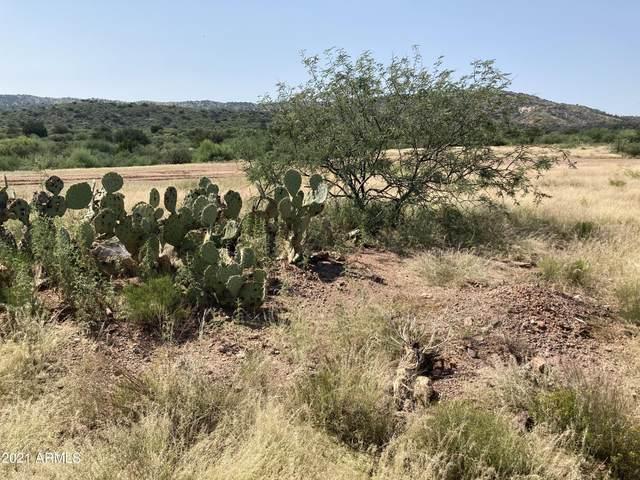 13X S Tatum Trail, Payson, AZ 85541 (MLS #6291662) :: The Copa Team | The Maricopa Real Estate Company