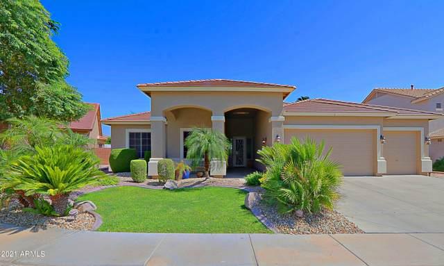 6207 N 132nd Drive, Litchfield Park, AZ 85340 (MLS #6291672) :: The Riddle Group