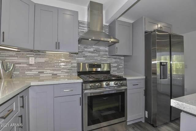 11620 N Hagen Drive, Sun City, AZ 85351 (MLS #6291673) :: Klaus Team Real Estate Solutions