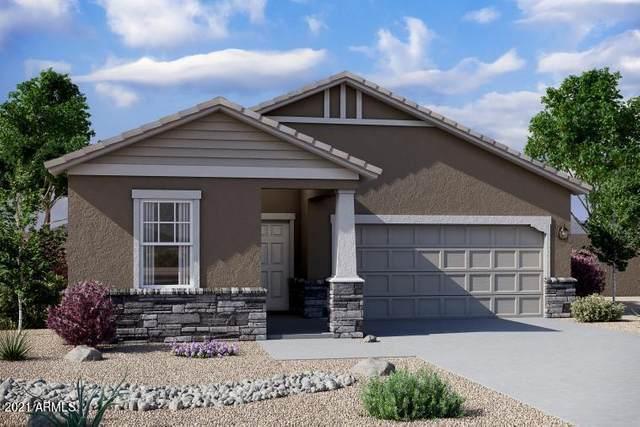6529 W Latona Road, Laveen, AZ 85339 (MLS #6291684) :: Klaus Team Real Estate Solutions