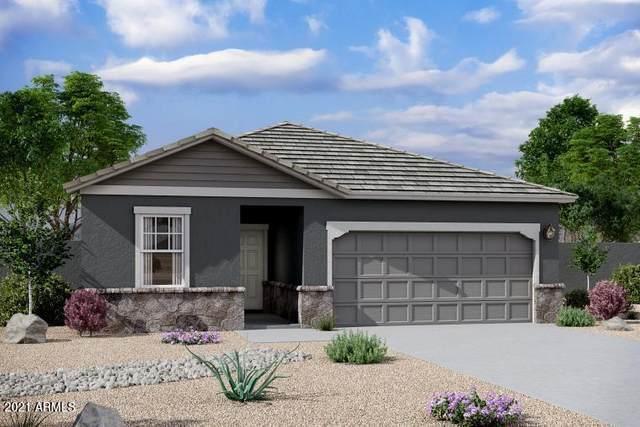 6534 W Latona Road, Laveen, AZ 85339 (MLS #6291688) :: Klaus Team Real Estate Solutions