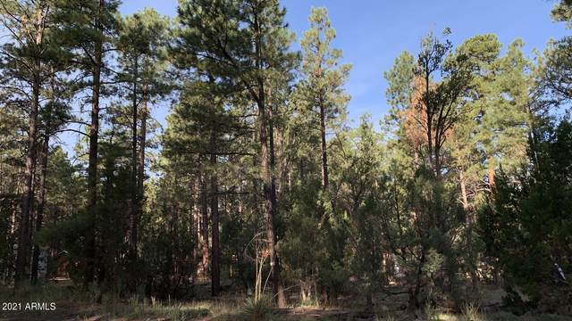 2964 Teddy Bear Trail, Overgaard, AZ 85933 (MLS #6291832) :: Executive Realty Advisors