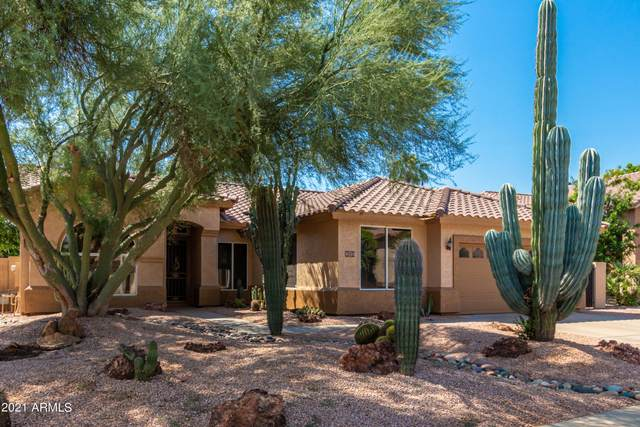 293 W Patrick Street, Gilbert, AZ 85233 (MLS #6291837) :: Relevate | Phoenix