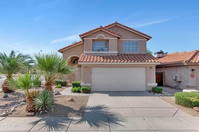 4627 E Meadow Drive, Phoenix, AZ 85032 (MLS #6291855) :: Elite Home Advisors