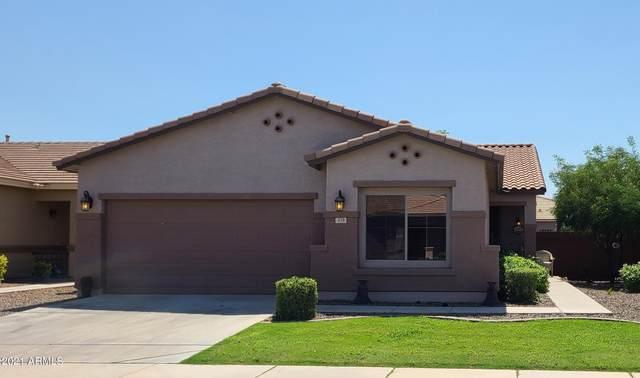 219 W Dragon Tree Avenue, Queen Creek, AZ 85140 (MLS #6291917) :: Elite Home Advisors