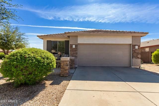 21445 E Calle De Flores Court, Queen Creek, AZ 85142 (MLS #6291927) :: Yost Realty Group at RE/MAX Casa Grande