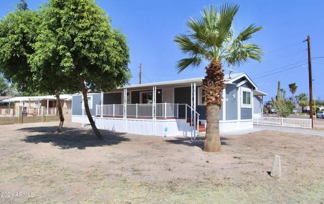 219 S Paradise Street, Mesa, AZ 85208 (MLS #6291945) :: Executive Realty Advisors