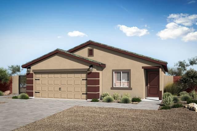 329 S Mulberry Street, Florence, AZ 85132 (MLS #6291998) :: Elite Home Advisors