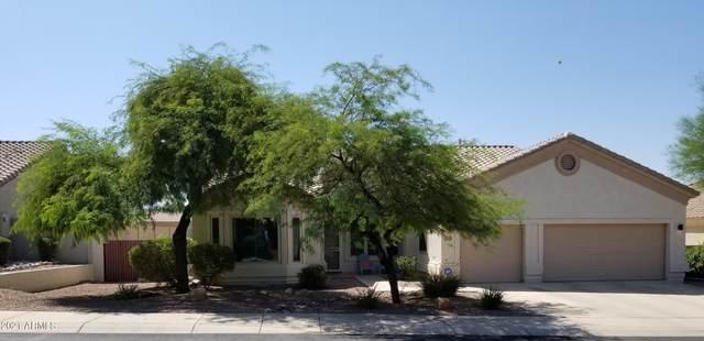 17685 W Eagle Drive, Goodyear, AZ 85338 (MLS #6292004) :: Yost Realty Group at RE/MAX Casa Grande