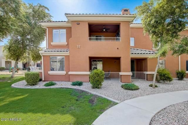 955 E Knox Road #118, Chandler, AZ 85225 (MLS #6292020) :: Executive Realty Advisors
