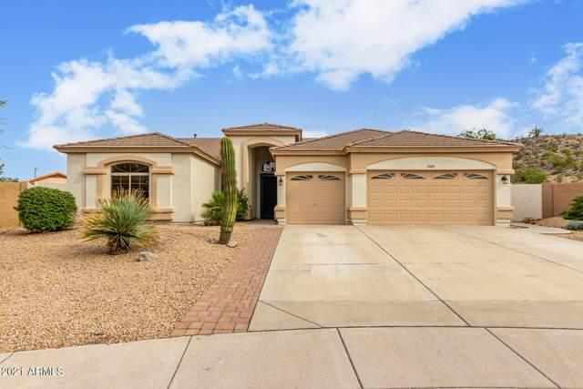 11485 S Obispo Drive, Goodyear, AZ 85338 (MLS #6292044) :: Klaus Team Real Estate Solutions