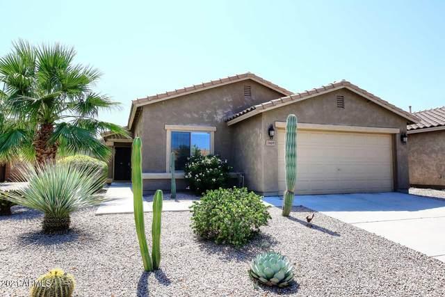 2669 W Mira Drive, Queen Creek, AZ 85142 (MLS #6292062) :: Klaus Team Real Estate Solutions