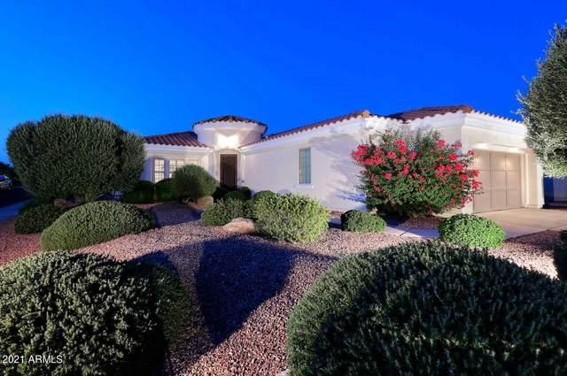 12960 W Micheltorena Drive, Sun City West, AZ 85375 (MLS #6292079) :: Klaus Team Real Estate Solutions